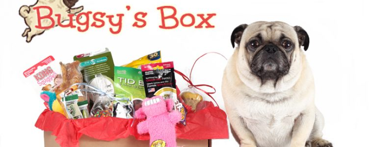 Bugsy-Box-image